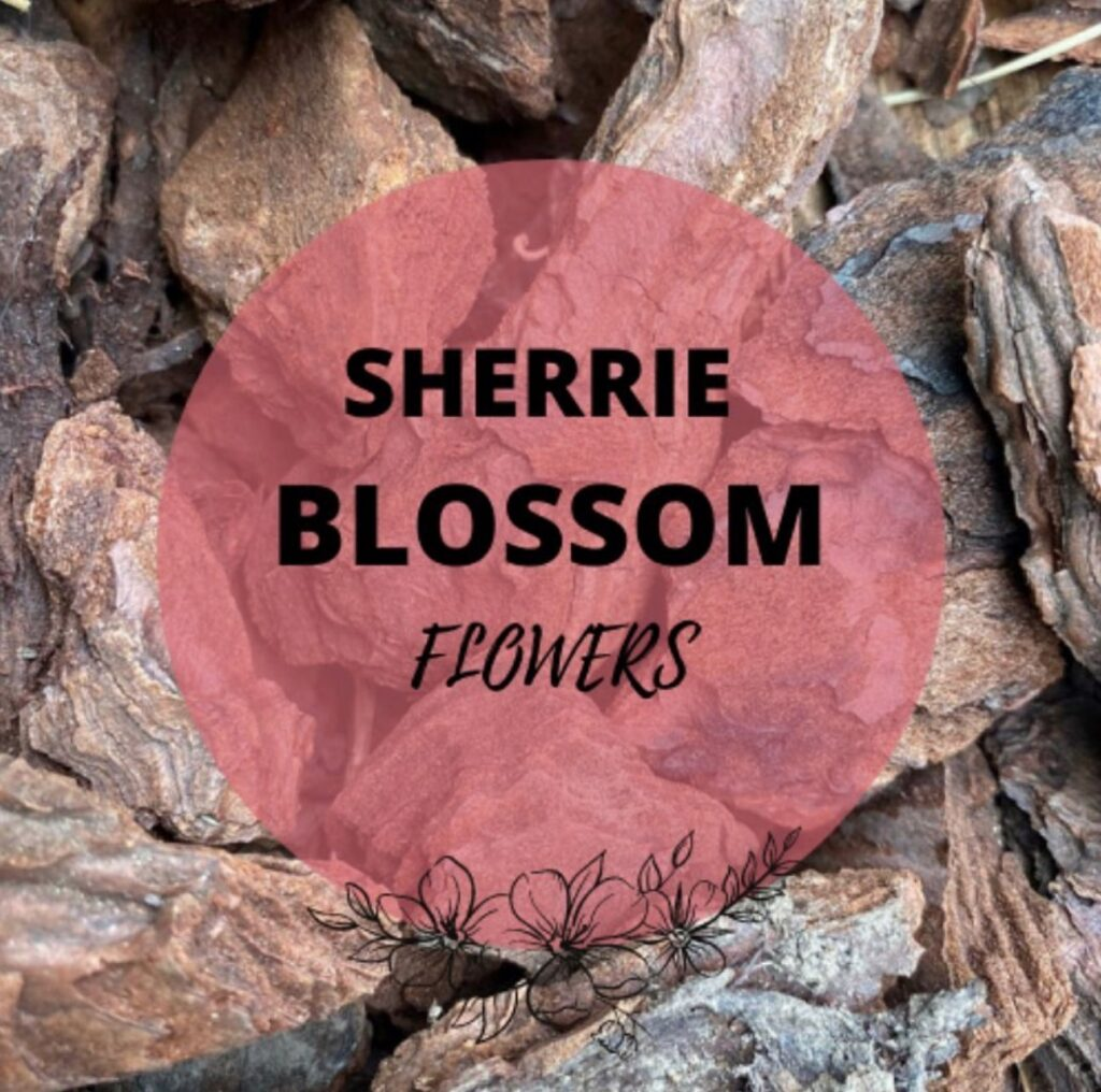 Welcome to Sherrie Blossom Flowers